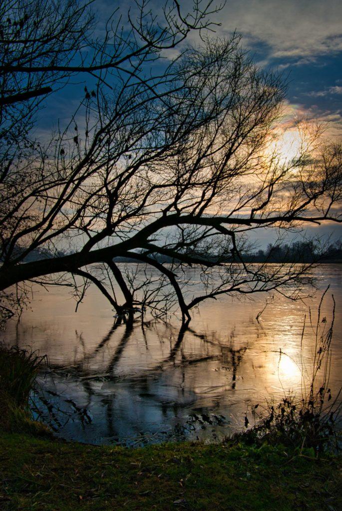 Sonnenuntergang Alte Süderelbe