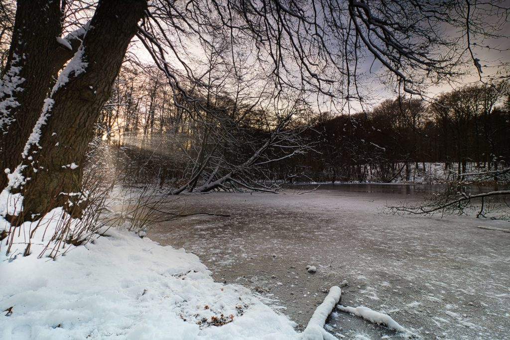 Mühlenbach im Januar