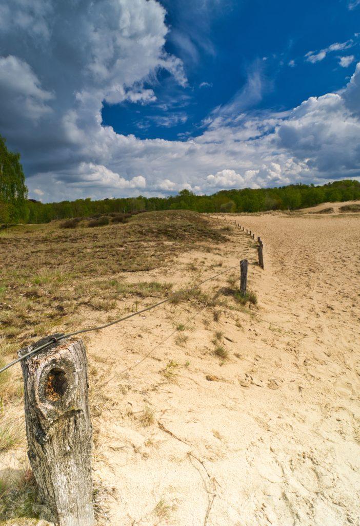 Boberger Düne offene Sandflächen