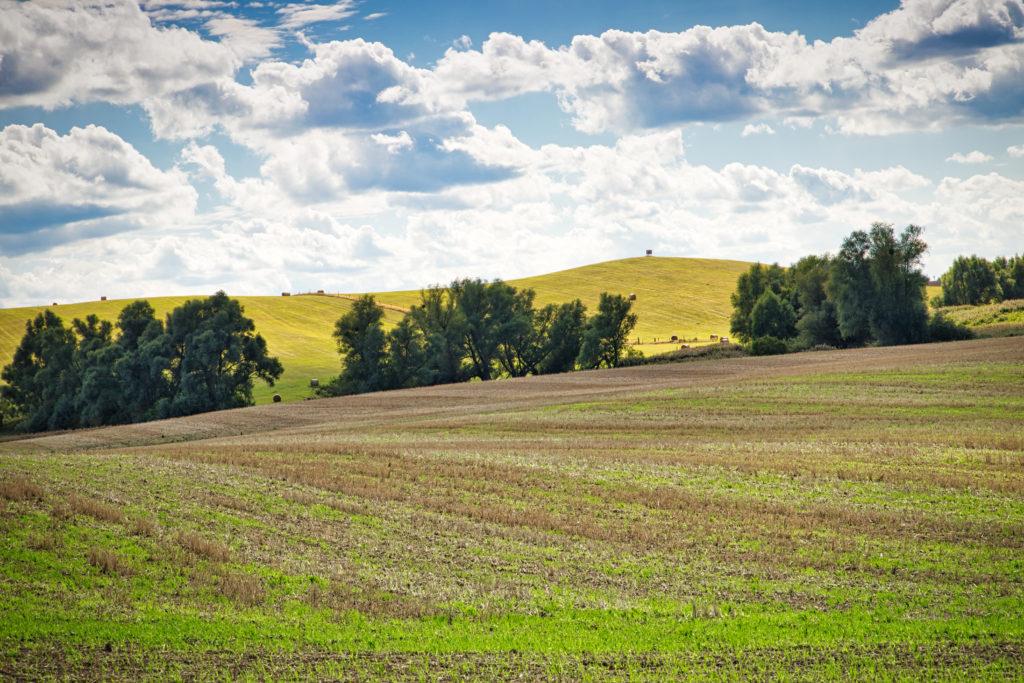 Boizenburger Land