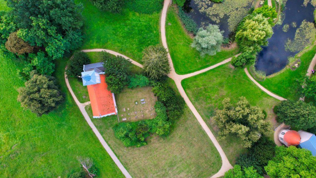 Riesen-Lebensbaum Schlosspark Criewen