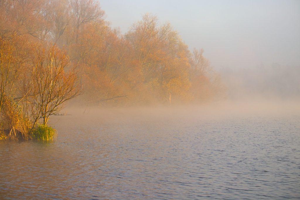 Süderelbe Sonnenaufgang bei Nebel